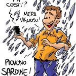 Piovono sardine!